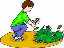 Cartoon showing boy picking flowers